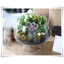 Salaterka szklana na nóżce KK-4 H-15,5 cm D-16 cm / szkło ekologiczne