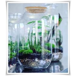 Dekoracyjny duży słój szklany 42cm z korkiem , terrarium na las w szkle, miniogródek - 1