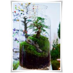 Słój szklany dekoracyjny W-332B1 H-40 cm D-19 cm / szkło ekologiczne
