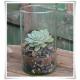 Tuba szklana, wazon cylindryczny H-20 cm D-12,5 cm / szkło ekologiczne - 7