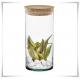 Wazon z eko szkła, cylinder szklany 25 cm, tuba z pokrywką z korka - 3