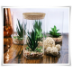 Tuba szklana z korkiem H-25 cm D-13 cm / szkło ekologiczne - 1