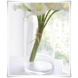 Wazon cylinder za szkła, szklana tuba, wazan w kształcie walca 25 cm - 1
