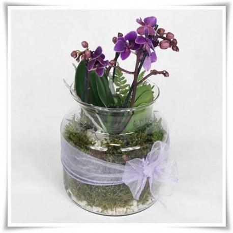 Ozdobny słój szklany, wazon z ekologicznego szkła do lasów w szkle - 1