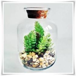 Wazon słój szklany, BAŃKA terrarium ze szkła 24cm z korkiem - 1