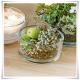 Salaterka szklana, miska - cylinder z czystego, grubego szkła 14 cm - 6
