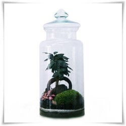 Słój szklany z pokrywką W-332B H-35 cm D-19 cm / szkło ekologiczne - 1