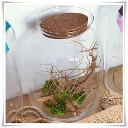 Słój ozdobny ze szkła z korkiem, terrarium szklane na rośliny 22cm - 1
