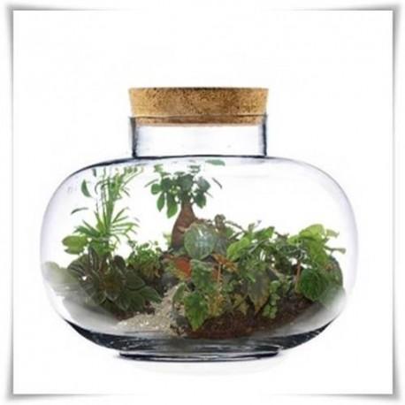 Dekoracyjny kulisty szklany słój, terrarium szkło 26cm z korkirm. - 1