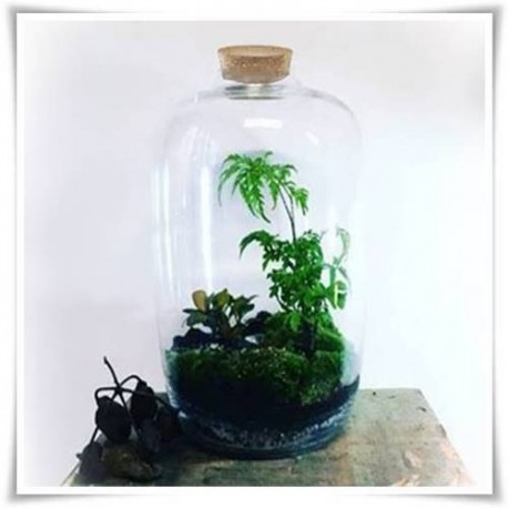 Słój szklany BARREL, wazon ze szkła, terrarium H-45 D-26 z korkiem