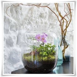 Dekoracyjny duży słój szklany 32cm, terrarium na las w szkle, miniogródek - 1