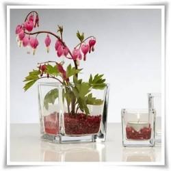 Wazon szklany kwadratowy, kostka szklana na świeczki 14 cm - 1