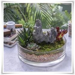 Szklana salaterka na sałatki i owoce, miska owalna 19 cm - 1