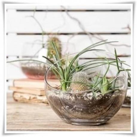 Kula szklana skos 15 cm, wazon w kształcie kuli z bezbarwnego szkła - 1