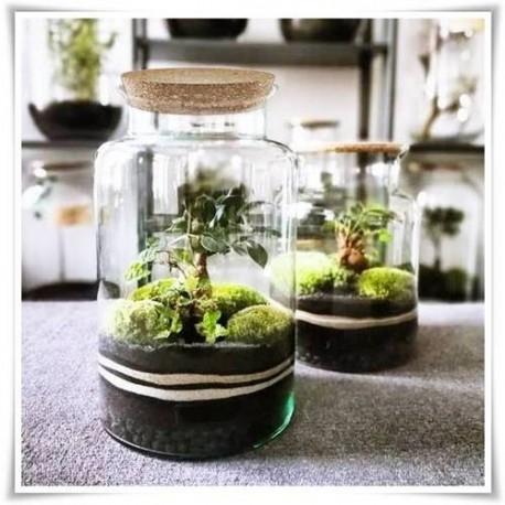 Szklany słój dekoracyjny z ekoszkła, terrarium 30 cm - 1