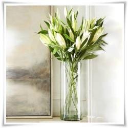 Tuba szklana, wazon cylindryczny H-38 cm D-11 cm / szkło ekologiczne