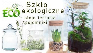 Słoje, terraria - szkło ekologiczne